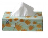 Facial Tissue Luxury