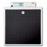 Seca 875 Class III Digital Scale
